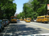 NY Buses Galore.png (50525 bytes)